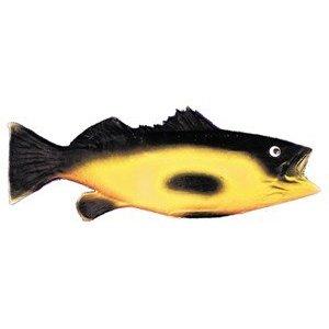 Fake Fish