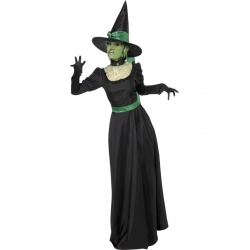 Black and Green Victorian Wicked Witch costume