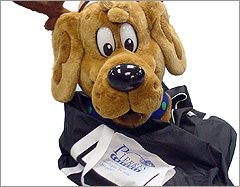 Mascot Carry Bag