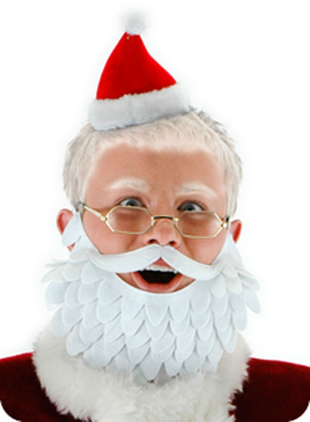 Novelty Santa Kit
