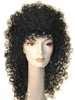 Longer Version Cher Wig