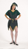 Velvet Elf Tunic Costume