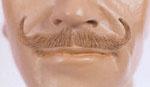 Ambassador Mustache III