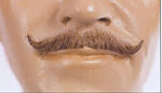 Ambassador Mustache IV