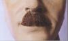 Chaplin Moustache