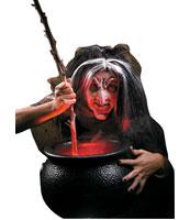 Evil Witch Kit