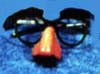 Beagle Puss Glasses