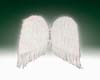"""Feather Angel Wings (22"""")"""