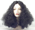 Deluxe Diana R Wig