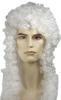 Special Bargain Judge Wig