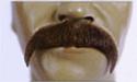 Down Turn Mustache -1
