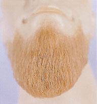 Beard - Five Points